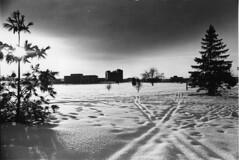 20021232-winter-campus-007