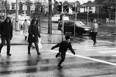 pedestrian crossing race(explored) (Sina Farhat) Tags: light ljus fotosondag fs171119 samling people folk regn rain winter vinter stop trafic trafik running springande kid unge barn streetphoto gatufoto övergångsställe pedestriancrossing cafetintin blackandwhite monochrome svartvit gothenborg göteborg sweden sverige 031 canon50d canon50mm14usm raw photoshopcc silverefexpro2