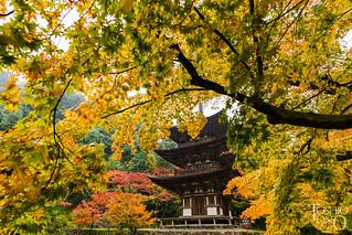 Saimyo-ji,Shiga,Japan