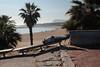 #19-montjuic (mdsmdsmds) Tags: barceloneta playa