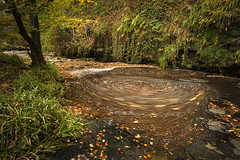 Tockholes Woods (TrotterFechan) Tags: woods autumn trees leaves river