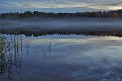 Mist (Stefano Rugolo) Tags: stefanorugolo pentax k5 smcpentaxda1855mmf3556alwr mist landscape lakeside lake reflection fog sweden hälsingland tree forest water sky wood longexposure