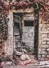 باب الخريف (jihadelkassm) Tags: syria homs old city door حمص سوريا بيت عتيق خريف باب ورق شجر آحمر آصفر