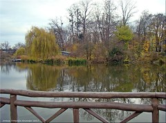 Bad Nauheim - Herbsttag im Park (2)
