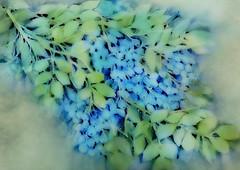 autumn blues (Ani Carrington) Tags: watercolor textured blue berries autumn fall negativepainting