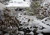 2017 Germany // Unser Garten - Our garden // im Dezember // (maerzbecher-Deutschland zu Fuss) Tags: 2017 garten natur deutschland germany maerzbecher garden unsergarten dezember