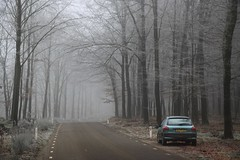 (Uno100) Tags: 206 green forest winter bos veluwe peugeot