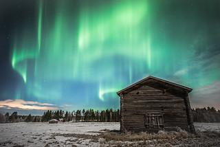 Northern lights dancing above Korkia's old barn