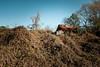 Hibernation (MilkaWay) Tags: georgia ruralgeorgia jacksoncounty kudzu deadkudzu deadvegetation winter overgrown abandoned theforgotten barn tinroof thesouth