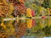 Beautiful Tree Reflection (Stanley Zimny (Thank You for 27 Million views)) Tags: autumn fall landscape reflection color rockefeller preserve bird lake