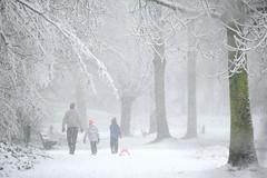 winter-wonderland (Don Pedro de Carrion de los Condes !) Tags: donpedro d700 sneeuw bos pad kinderen wit sfeer bomen takken besneeuwd wandeling winters slee sneeuwbui wittewereld genieten sneeuwlandschap