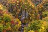 DSC_3210 (Timmy Tsai) Tags: autumnleaves brook canyon colors japan miyagiken narukyogorge otaniriver tourism trail train autumn mountain photography season tree 大谷川 季節 宮城縣 山 峽谷 攝影 旅遊 日本 樹 步道 溪水 火車 秋天 紅葉 顏色 鳴子峽
