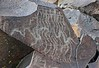 Petroglyphs / Blackrock Well Site (Ron Wolf) Tags: anthropology archaeology deathvalleynationalpark nationalpark nativeamerican salinevalley abstract meanderingline nestedcurves petroglyph rockart wavyline california