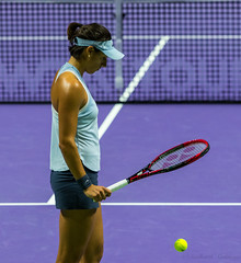 20171025-0I7A1184 (siddharthx) Tags: singapore sg simonahalep carolinegarcia elinasvitolina wtasingapore tennis womenstennis singaporeindoorstadium power grace elegance contest competition 1seed 4seed 6seed 8seed champions rally volley serve powerfulserves focus emotions sports wtatour porscheservesspeed bnpparibas stadium sport people wta winner sign crowd carolinewozniacki portrait actionshots frozenintime momenttofocus