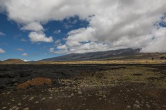 Puako to Hilo Road Trip (gregreher) Tags: roadtrip bigisland hawaii