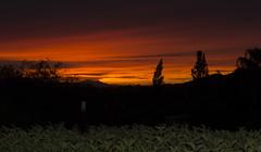 Band of Colors (craig21746) Tags: arizona sunrise clouds color weather nikon nikond7200 nikon1680mm scottsdale