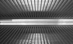 Divergence Mono (nrg_crisis) Tags: architecture abstractarchitecture lines symmetry nyc lowermanhattan groundzero oculus skylight geometric window room ceiling