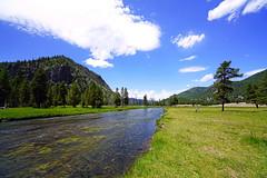 Madison River, Yellowstone NP, USA (Andrey Sulitskiy) Tags: usa yellowstone wyoming