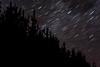 Rotation (Jack Fingland) Tags: astrophotography stars landscape trees long exposure night dark moody