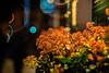 Flowers in the Night - Photo # 1 of a Christmas Series (*Capture the Moment*) Tags: 2016 advent altglas bloom blüten bokeh fotowalk mog meyergörlitztrioplan10028 meyeroptikgörlitztrioplan10028 nightshot pflanzen plants sonya7m2 sonya7mii sonya7mark2 sonyilce7m2 trioplan28100neo bokehlicious