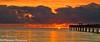 Florida Orange (BobHartmannPhotography) Tags: bobhartmannphotography hartmann landscape 1365 c2017bobhartmann everglades bobhartmanncom bobhartmann 365 wwwbobhartmanncom fl usa