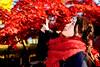 Beautiful Lady at Gotokuji (Dakiny) Tags: 2017 winter december japan tokyo setagayaward gotokuji city street temple gotokujitemple autumnleaves autumncolors maple red bokeh