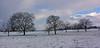 Campagne hivernale (Diegojack) Tags: paysages echandens vaud suisse hiver neige champs