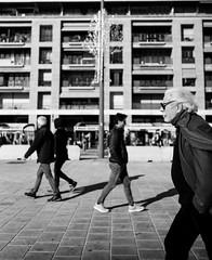 Retour sur une promenade autour du Vieux Port [Vieux-Port, Marseille] Leica M240 + Summarit-M 35/2.4 (wylOou) Tags: 112017 2017 leica essai leicam240 m m240 marseille novembre paca summarit3524 test weekend
