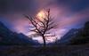 Streaking Moon (mattymeis) Tags: glacier national park montana moon night saint marys lake tree fall stars matt meisenheimer nikon