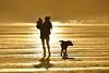 NOV_1724_00017 (Roy Curtis, Cornwall) Tags: uk cornwall newquay settingsun silhouettes fistralbeach beach sea coast mother child family love