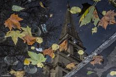 A Spitalfields Puddle © (wpnewington) Tags: spitalfields puddle rain eastend hawksmoor church reflection leaves london