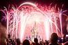 Finale (fractal pics) Tags: disney waltdisneyworld disneyworld magickingdom disneyphotos disneyphotography sonya7rii disneyparks disneyfireworks fireworks happilyeverafter