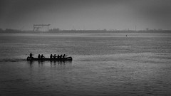 to a land far far away / teamwork (Özgür Gürgey) Tags: 169 2016 24120mm bw blankenese d750 elbe hamburg nikon boat grainy minimal misty river rowing
