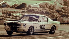 Mustang Shelby 350 GT (P.J.V Martins Photography) Tags: mustang shelby 350 gt track circuitodoestoril historic racing festival sportscar carro car autodromo autoracing endurance estoril portugal