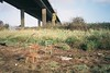 Lamplighter's Marsh (knautia) Tags: lamplightersmarsh bristol england uk november 2017 film ishootfilm olympus xa2 olympusxa2 fuji superia 400iso m5 motorway bridge