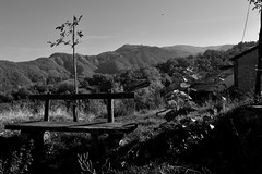 Un posto al sole (mttdlp) Tags: bianco nero blackwithe black white bw sky mountain panchina panorama ozzola tree shadows bench appennino nikon d3200