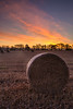 Bright and Early (simpletones) Tags: sunrise hay bale morning landscape carrington midlothian scotland