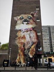 Irony & Boe / London Poplar - 10 nov 2017 (Ferdinand 'Ferre' Feys) Tags: london england uk streetart artdelarue graffitiart graffiti graff urbanart urbanarte arteurbano ferdinandfeys irony