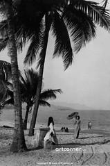 Nha Trang Beach - Biển Nha Trang - 1970 (Nguyen Ba Khiem) Tags: 1970s 1970 hìnhảnhxưa việtnam việtnamxưa nhatrang nhatrangxưa nguyễnbámậu phongcảnh biển nước dừa áodài