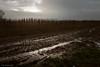 desolate landscape (soundmoods) Tags: desolate sun clouds tracks canon 24105mm