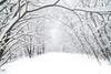 winter wonderland (sami kuosmanen) Tags: suomi syksy snow autumn art taivas tree talvi trees europe expression nature north metsä maisema luonto landscape lumi finland forest puu kuusankoski kouvola winter white