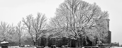 Mont Sainte-Odile - Abbaye de Hohenbourg (thierrybalint) Tags: nikoniste neige parc abbaye hohenbourg alsace sainteodile