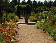 Lambley display garden (Lesley A Butler) Tags: ascot australia lambleynursery spring victoria