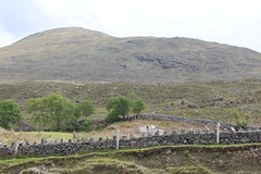IMG_3276 (avsfan1321) Tags: ireland killaryfjord countygalway countymayo connemara wildatlanticway mountains