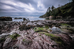 Sunrise & high tide (NikNak Allen) Tags: cornwall cawsand cawsandbay bay rocks seaweed pools sea water ocean coast horizon clouds trees seascape view look early morning low pov longexposure wide sand beach smooth