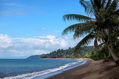 Planet Earth First ! (AnyMotion) Tags: unclimateconference cop23 beach strand sea meer sky himmel palmtrees palmen pacificocean pazifik 2009 drakebay pacificcoast costarica republicofcostarica centralamerica anymotion reisen travel 5d2 canoneos5dmarkii landschaftsaufnahmen