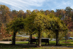 A place to relax!  (Explored) (Millie (I'll catch with you on weekend!)) Tags: sweetarrowlakecountypark schuylkillcounty pennsylvania lake autumn fall foliage bench sky trees colorful soe inspiredbylove saveearth canon24105l canont6i