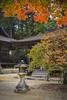 Koyasan a World Heritage site (DanÅke Carlsson) Tags: kiimountains japan japanese koyasan zen buddhism temple lantern autumn fall colors orange village mountains religion
