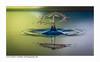 color splash! (H. Roebke) Tags: color waterandlight abstrakt wasserlicht abstract 2015 blitz water makro grün blue drops macro farbe splash highspeed blau green flash tropfen canon100mmf28makrolisii canon7dmkii lightroom dropondrop