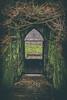 Puerta (sairacaz) Tags: parque garden jardin green verde vigo galicia puerta door canon canonef2470mmf4lisusm eos70d